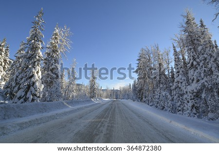 Snowed road through the winter forest in Manning Park, BC. - stock photo