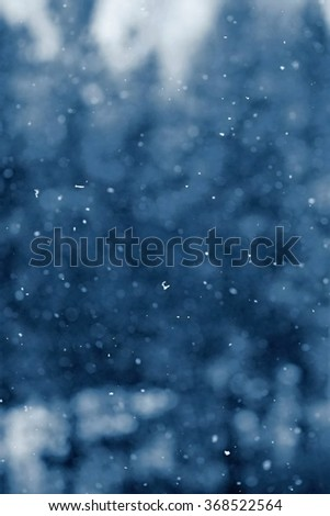 Snowfall. Beautiful winter background seasonal nature and the weather in winter. Winter landscape with falling snow. - stock photo