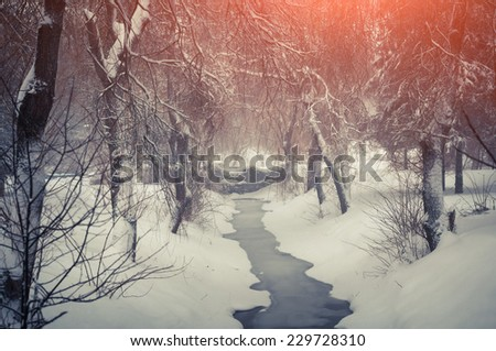 Snowfall in the city park. Retro style. - stock photo