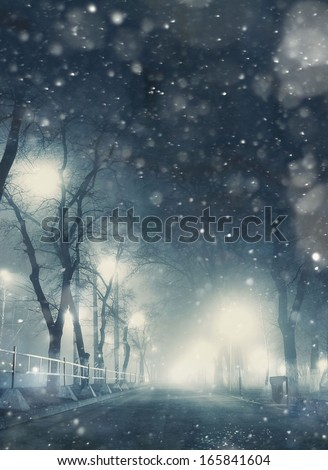 snowfall night in town - stock photo
