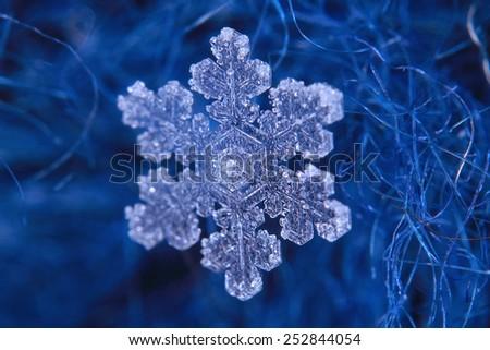 snowflake crystal natural snow - stock photo