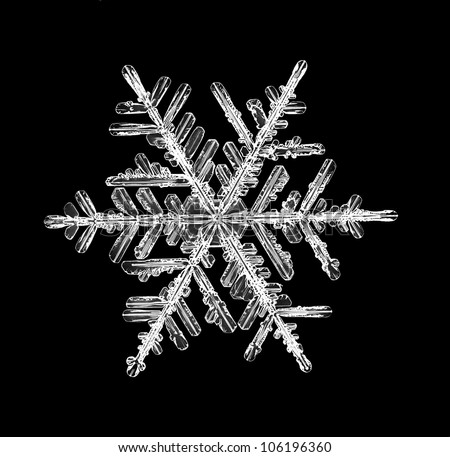 snowflake isolated on a black background natural - stock photo