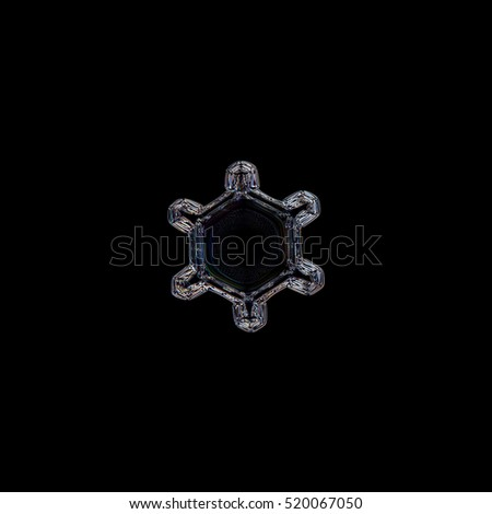 Snowflake isolated on black background. This is macro photo of real snow crystal: small and simple plate with large, empty central hexagon with unusual ring pattern of tiny dots around center.