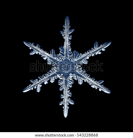 snowflake isolated on natural background