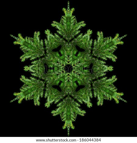 Snowflake of natural fir branch isolated on black background - stock photo