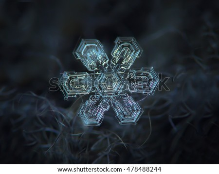 Snowflake on dark gray wool background. This is macro photo of real snow crystal with simple shape and broad arms, but complex inner pattern.