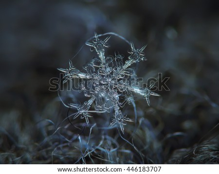 Snowflake on dark textured background: macro photo of real snow crystal on black woolen fabric in diffused light of cloudy sky. This is large stellar dendrite snowflake  with sharp and ornate arms.