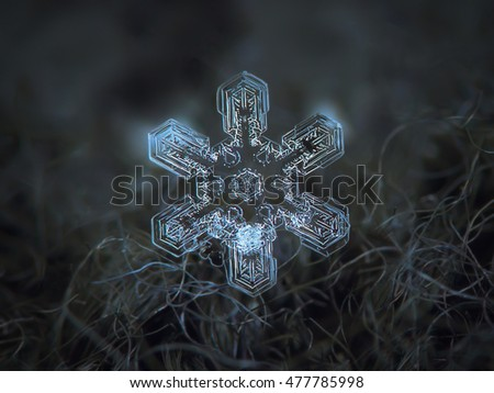 Snowflake on dark woolen background. This is macro photo of real snow crystal: large stellar dendrite with simple broad arms, but complex and beautiful inner structure.