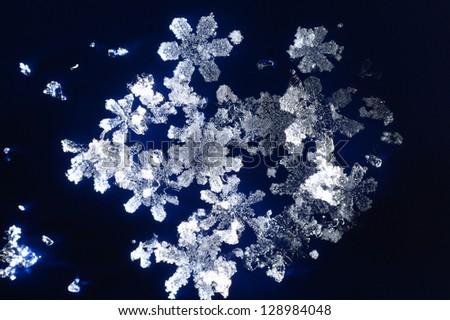 Snowflakes on dark blue background - stock photo