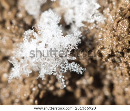 snowflakes on the ground. super macro