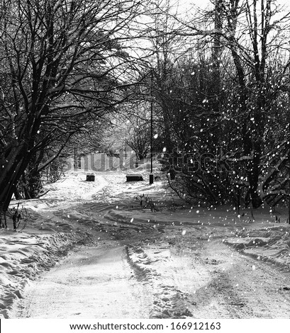 Snowing day, small path with snowing background on wintertime, winter season, winter time background,black and white photo, winter landscape,Christmas time. Winter holidays