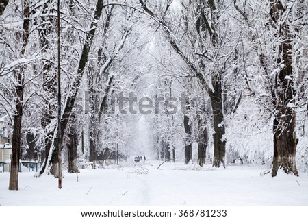 Snowing landscape in the park. High quality and beautiful details