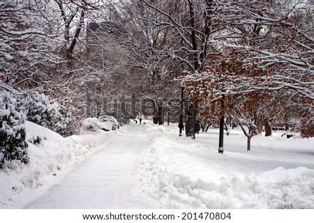 Snowing winter at Boston, Massachusetts, USA  - stock photo
