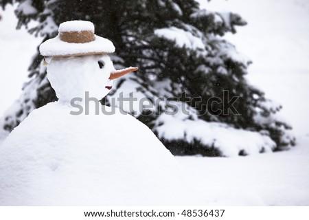snowman and pine tree - stock photo