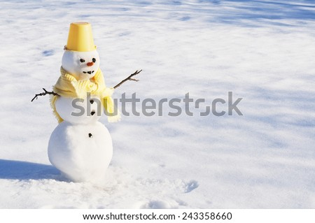 Snowman with carrot nose, and coal eyes/mouth on snowy field - stock photo