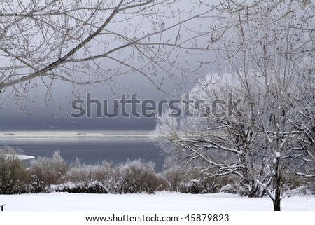 Snowscape with trees and a stormy sky - stock photo