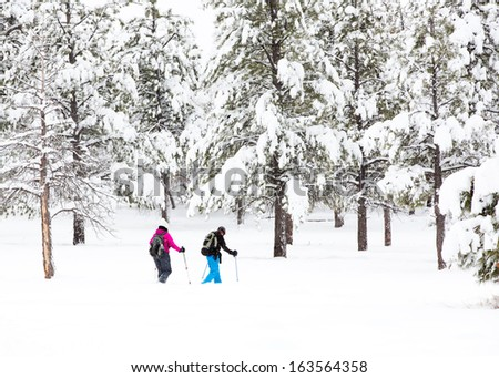 Snowshoeing Through the Forest After a Recent Winter Storm - stock photo