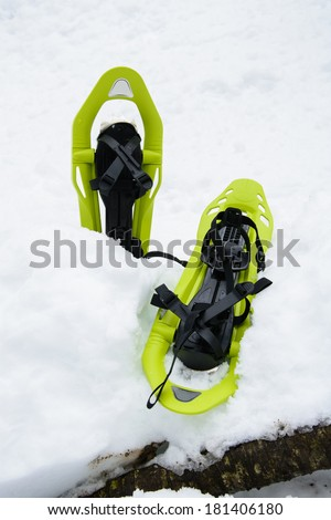 snowshoes - stock photo