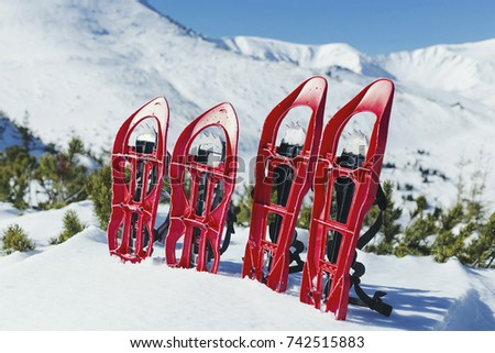Snowshoes stand in the snow against the background of the mountains.