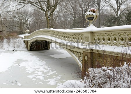 Snowstorm and the Bow Bridge in Central Park, Manhattan, New York