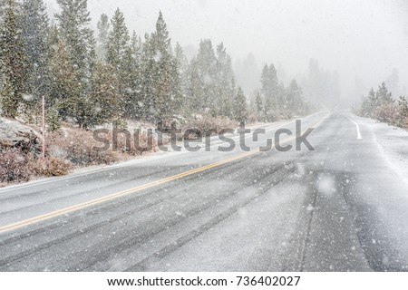 Snowstorm beginning in Yosemite National Park, Tioga Pass. Wet snowy road. California, USA.