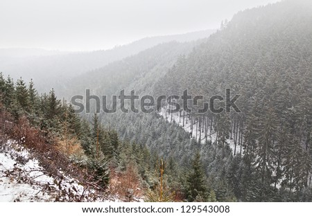 snowstorm in Hraz mountains during winter
