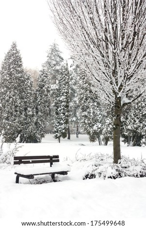 Snowy bench in city park - stock photo