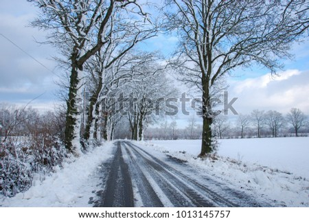 Snowy country road through a wintry landscape