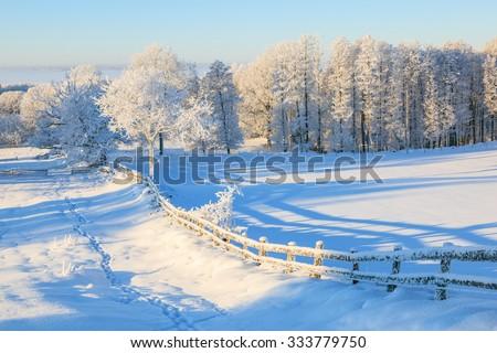 Snowy fence in winter landscape - stock photo