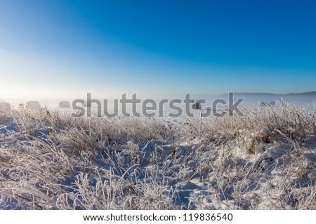 snowy hay bales near farm with grass (foggy weather) - stock photo