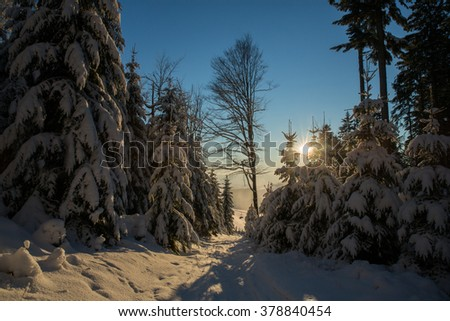 Snowy landscape at sunset - stock photo