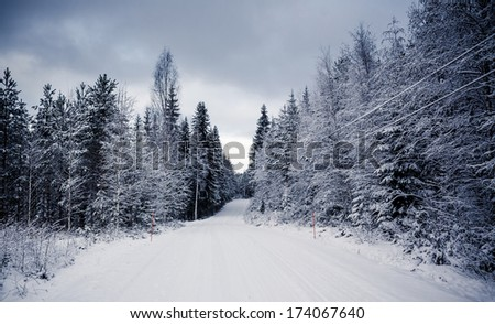 Snowy landscape in the forest in Central Finland - stock photo