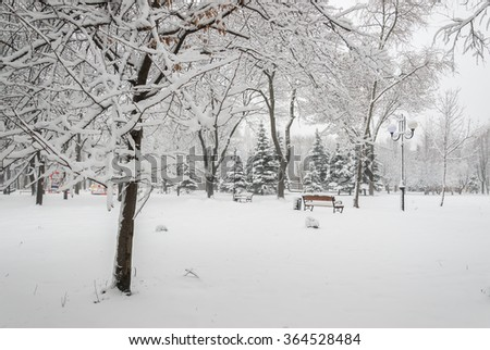 Snowy landscape with benches in the winter city park, cityscape