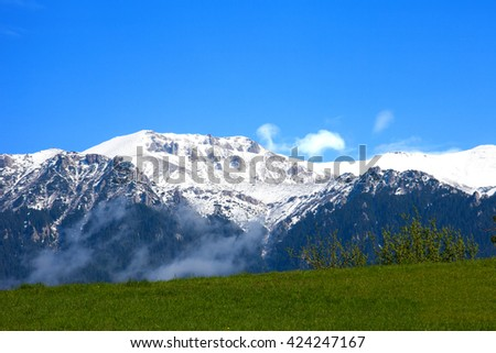 Snowy mountains with green meadow