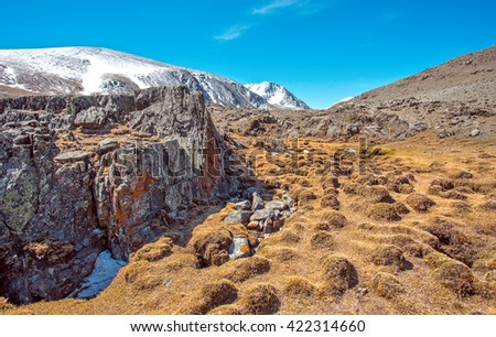 Snowy mountains with large rocks with yellow bog hummocks in foreground, Russia, Siberia, Altai mountains, - stock photo