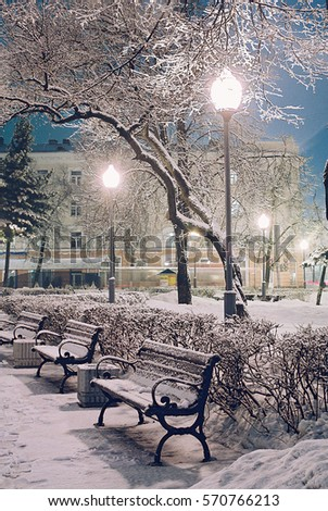 Snowy night alley in the park in winter with a lot of frosty trees and shining lanterns - winter city landscape