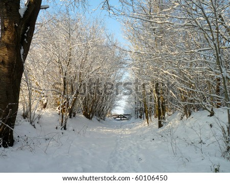 Snowy path uphill - stock photo