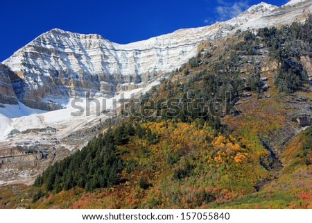 Snowy peaks above fall splendor, Utah, USA. - stock photo