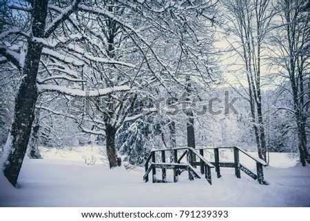 Snowy river with a little wooden bridge in winter