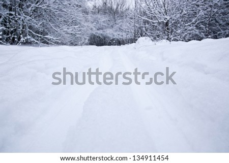 Snowy road in the park in winter. Winter forest. - stock photo