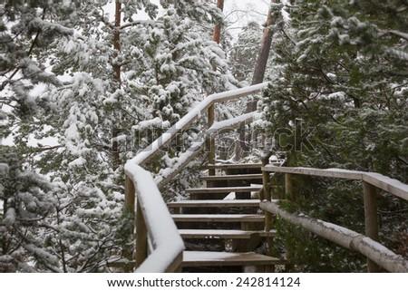 Snowy sidewalk - stock photo