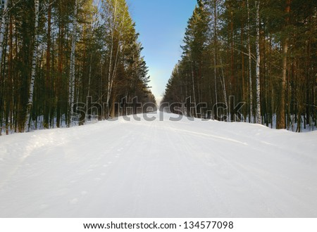snowy straight road through the coniferous forest - stock photo
