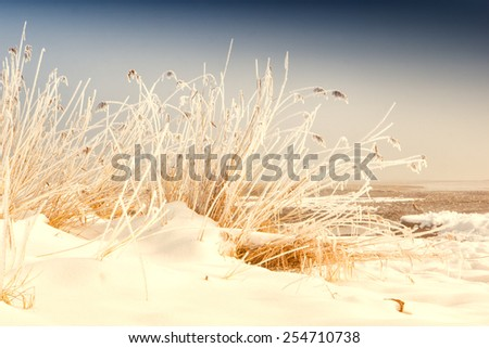 snowy winter day, lake chiemsee  - stock photo