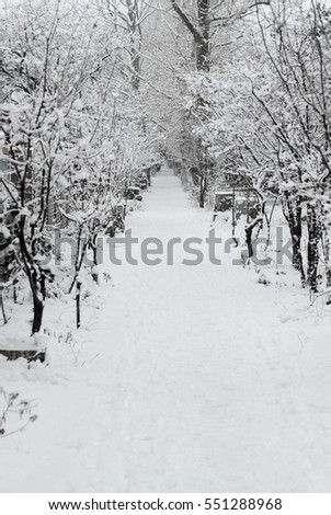 snowy winter in Crimea