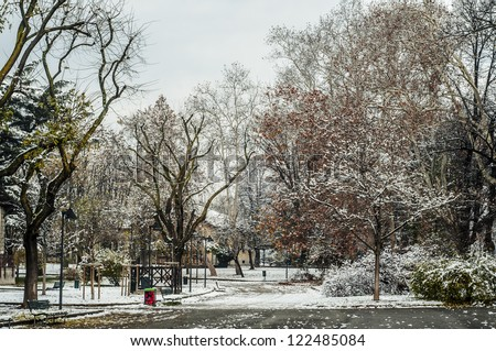 snowy winter landscape with trees