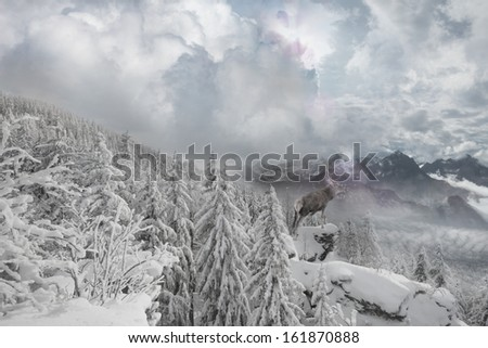 snowy winter mountain scape with a deer, standing on a cliff in a sun beam