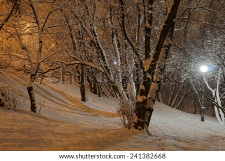 Snowy winter night in the park in Moscow - stock photo