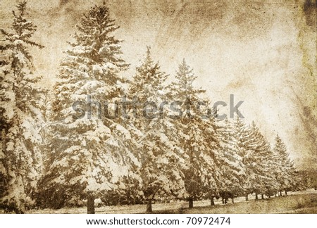 Snowy winter.Photo in vintage image style. - stock photo