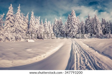 Snowy winter road in the mountain road. Sunny morning scene with a sunlight glowing fresh snow. Instagram toning. - stock photo