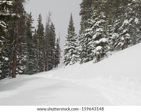 Colorado Winter Landscape Stock Photos Royalty Free